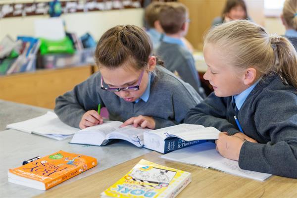 Tacaíocht Foghlama / Learning Support